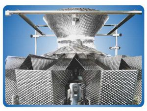 ATO W4 Cheese Multihead Weigher p1